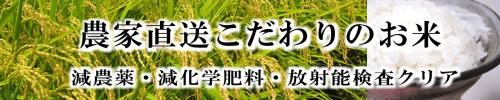 農家直送のお米