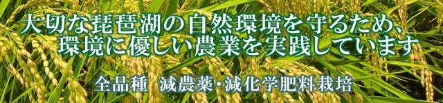 減農薬・減化学肥料・放射能検査済